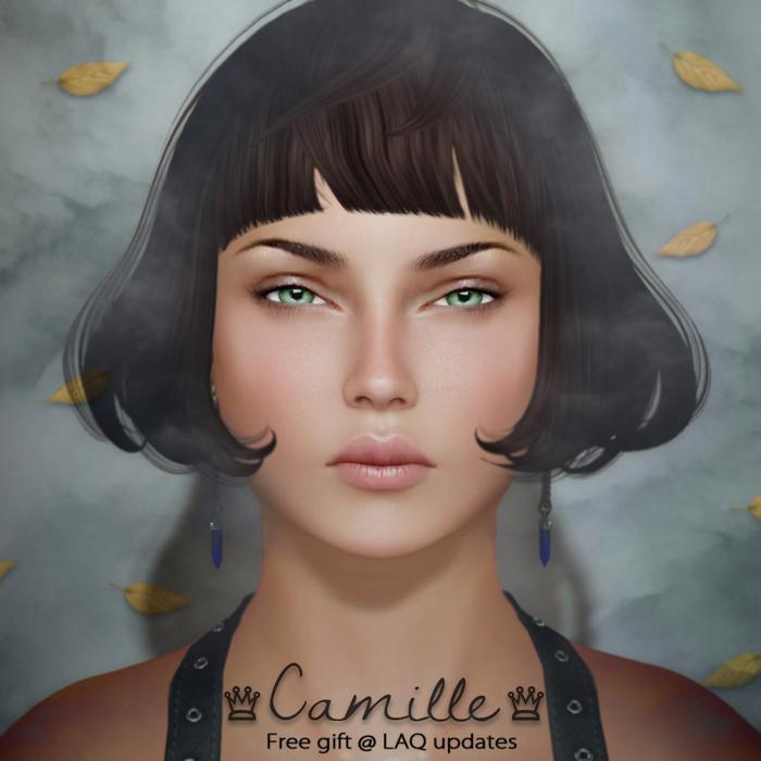 LAQ_Camille2